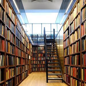 Библиотеки Большой Черниговки